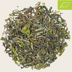 Bio Darjeeling First Flush Puttabong SFTGFOP